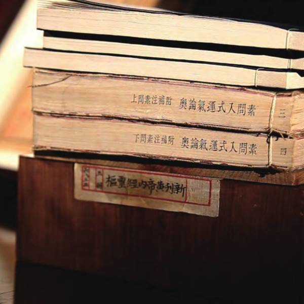 The volumes are safely preserved in a camphor wood bookcase<br />